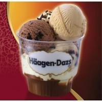 Haagen Dazs Ice Cream 100ml