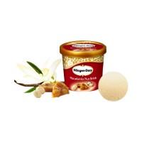 Haagen Dazs Ice Cream 500ml
